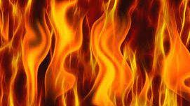 राजधानीमा विद्यार्थी बोकेको बसमा आगजानीे