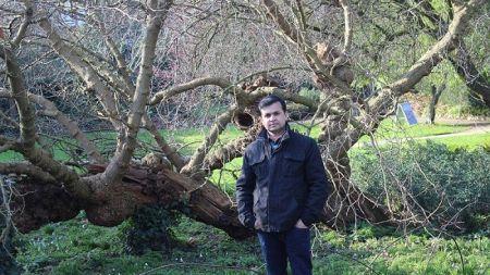 कविताः बजारमा जीवन