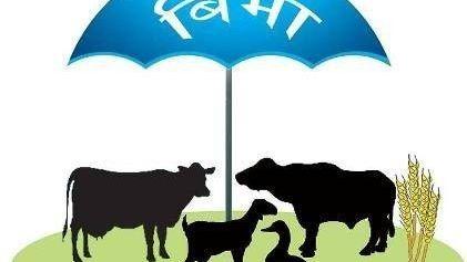 कर्णाली प्रदेशको कृषि तथा पशु बीमाका लागि ७० लाख विनियोजन