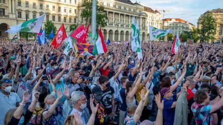 चिनियाँ विश्वविद्यालयको स्याटेलाइट क्याम्पस बनाउन लागेको विरोधमा हजारौं नागरिकले गरे प्रदर्शन